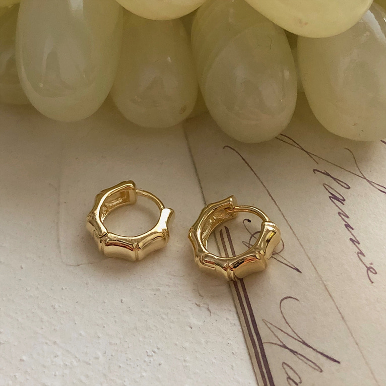 line one-touch ring earring(2color)